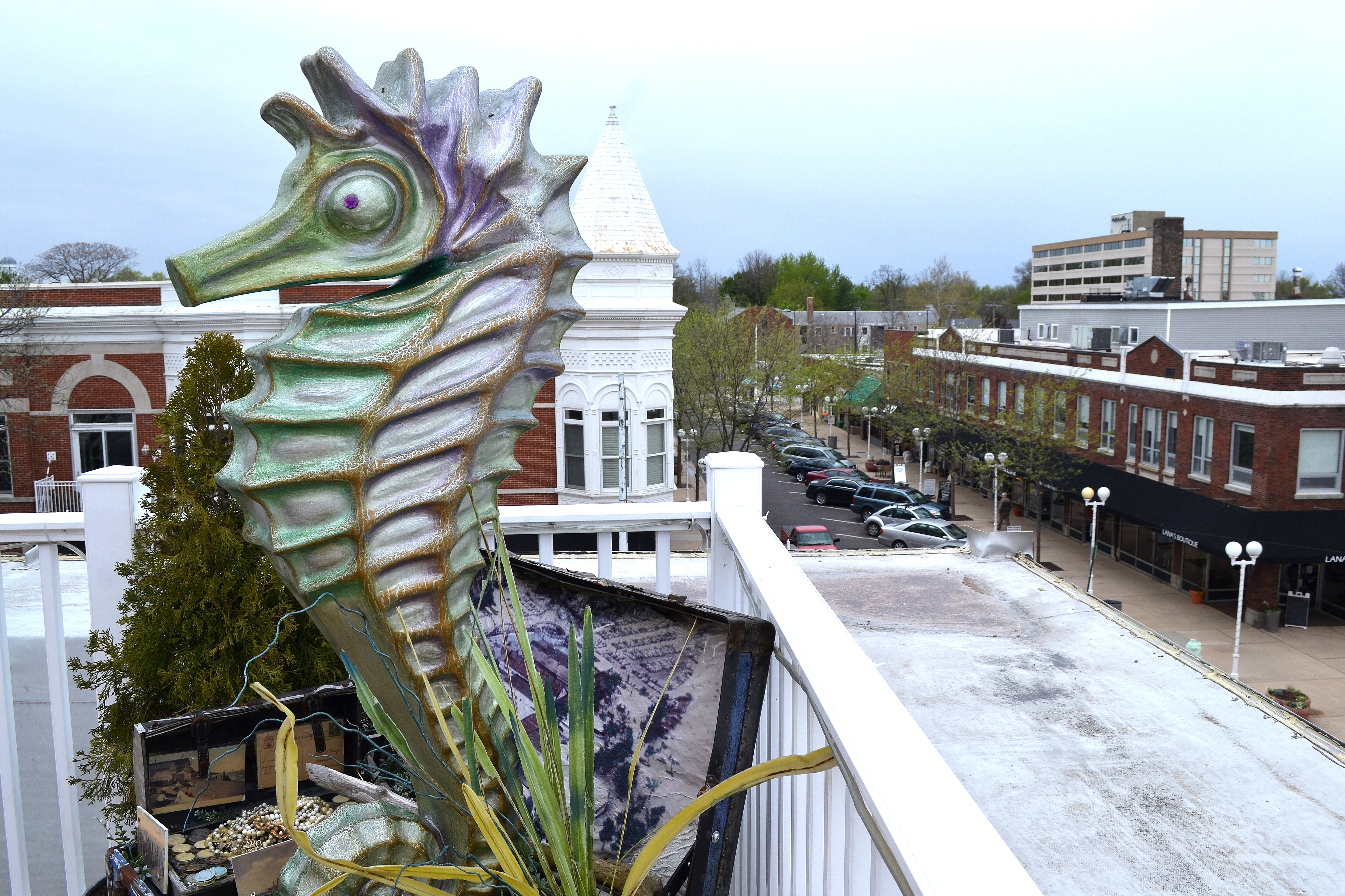 St-Joseph-Placemaking-Sea-Horse-on-Private-Rooftop
