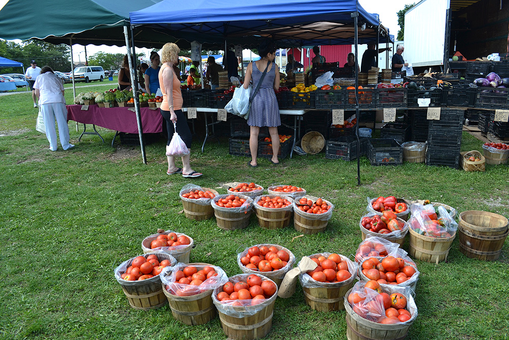 web Walled Lake Farmers Market September 2014 by Matt best (9)